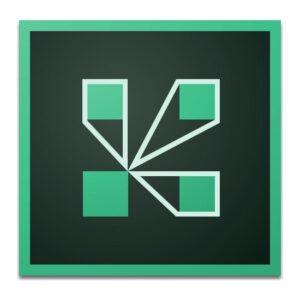 Adobe 100 Kişilik Sanal Toplantı Odası 1 Yıllık Ticari Abonelik Lisansı