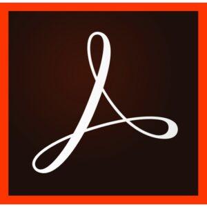 Adobe Acrobat Pro DC for Teams 1 Yıllık Abonelik Lisansı
