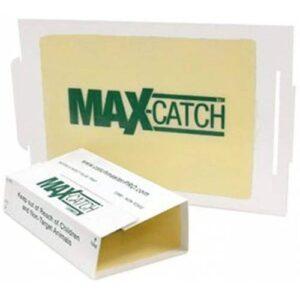 Catchmaster 72 Catch Max Fare 10 Adet Fare Yapışkanı Zehirsiz Etkili Fıstık Aromalı Fare Yapışkanı